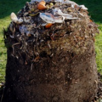 Image of home composting
